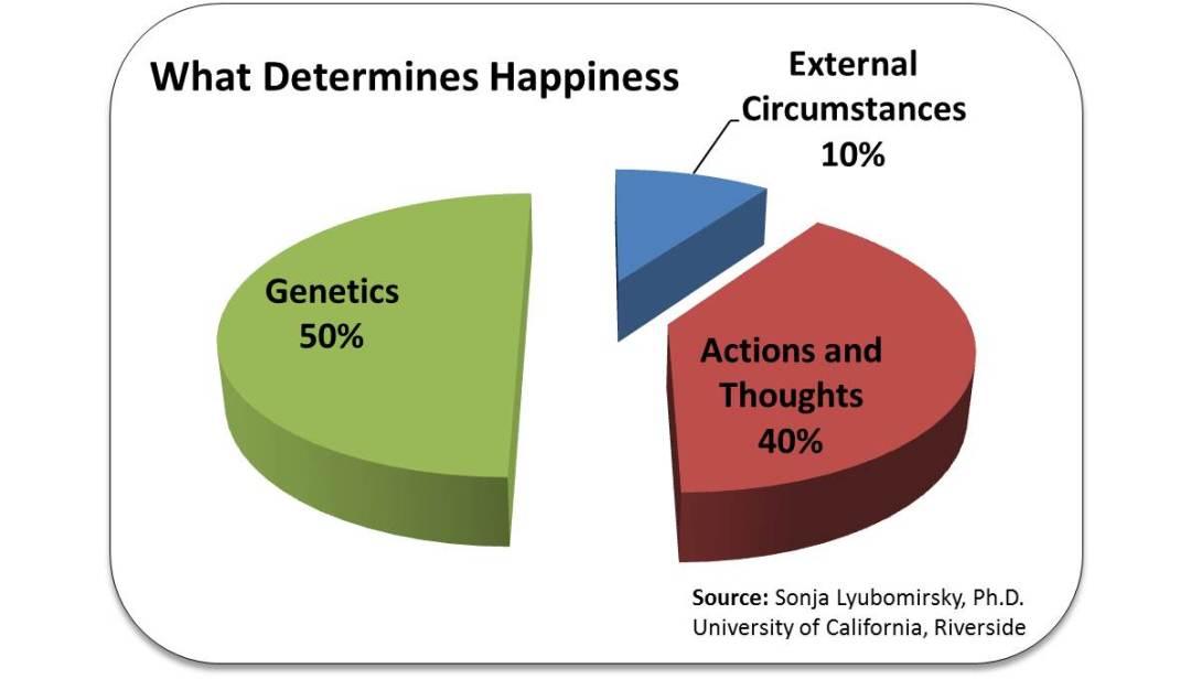 Determines-Happiness-Pie-Chart